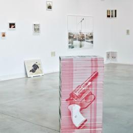 Jorge Fuembuena. Inside Insect. centro de Arte Alcobendas, 2016