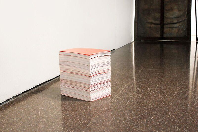 "Isabel Servera. Errores de impresión. ""Síntesi"". Arts Santa Mònica, 2014"