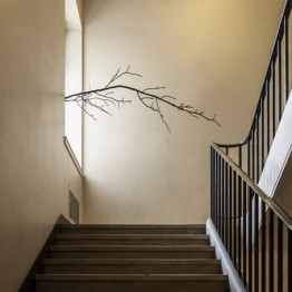 Arbre03 (L'architecture des arbres), 2013