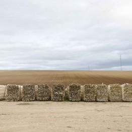 Mercedes Pimiento. Sin título, de la serie Handle with care, 2014