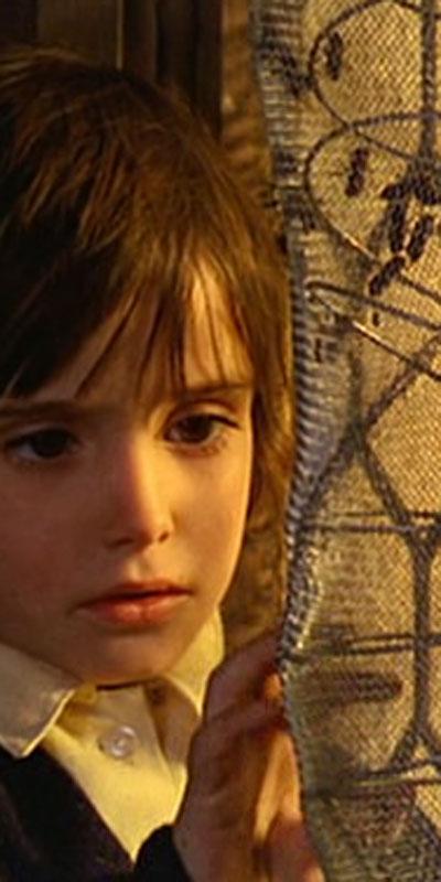 CinEd, programa de cooperación europea para la difusión escolar del cine de autor
