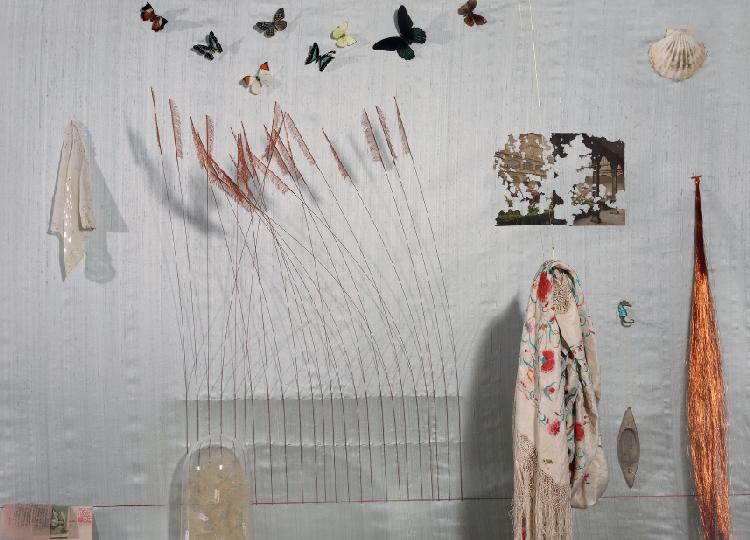 Anna Talens. My inner garden, 2010. Centro del Carmen, Valencia