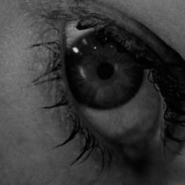 Hitchcock, la forma de nuestros miedos