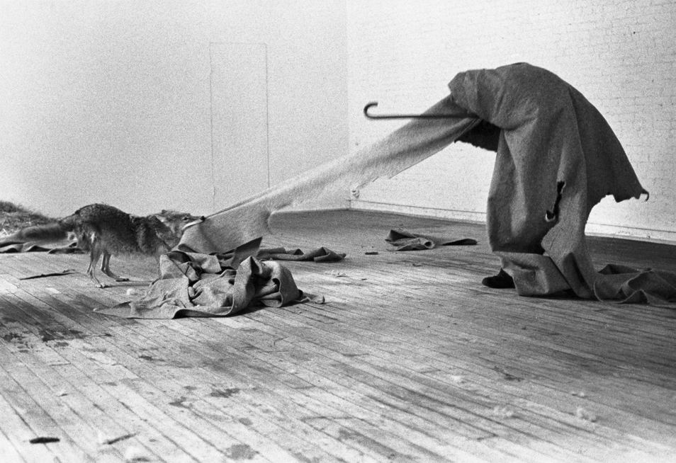 Joseph Beuys. Coyote: I like America and America likes me, 1974