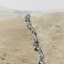Francis Alÿs, artista estrella en el MoMA