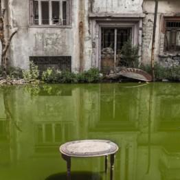 Cultura urbana y fotografías de la colección Yammime, en el décimo aniversario de Casa Árabe