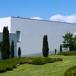 El Museo Serralves celebra 15 años mostrando grandes valores de su colección