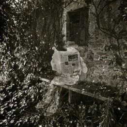 Joan Fontcuberta. L'urna l'oblida, amnistia, 1977