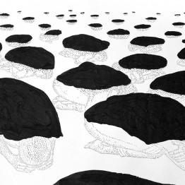 Las sombras de Amparo Sard