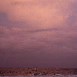 Wolfgang Tillmans. Fire Island, 2015