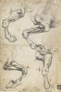 Leonardo da Vinci. Estudios de patas de caballos, hacia 1490-1492. Museo de Bellas Artes de Budapest