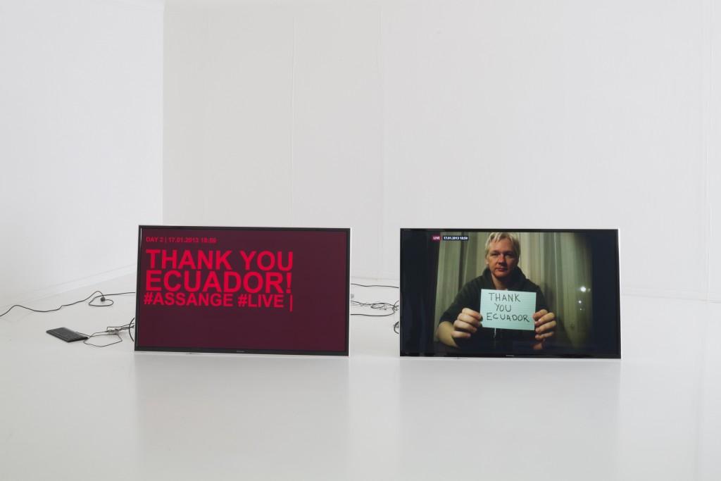 Helmhaus Zurich. Delivery for Mr. Assange, 2014 Cortesía de Helmhaus Zurich, Mancia/Bodmer y FBMstudio