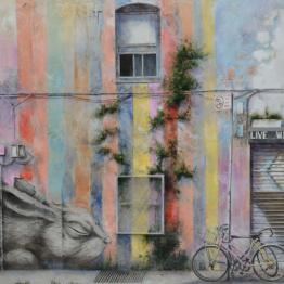 Coro López-Izquierdo retrata el arte urbano