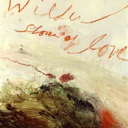 n_costas_cytwombly