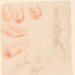 Obras maestras del dibujo: Niccolo Lapiccola.