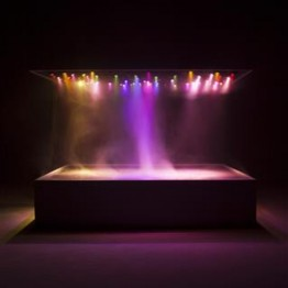 Pierre Huygue. L'Expédition scintillante, Act II (Light Box), 2002