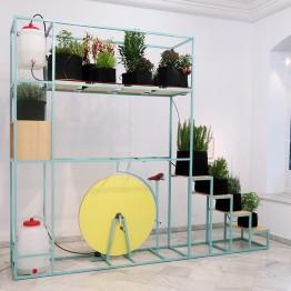 Santiago Morilla funda un bosque en la Galería Fernando Pradilla