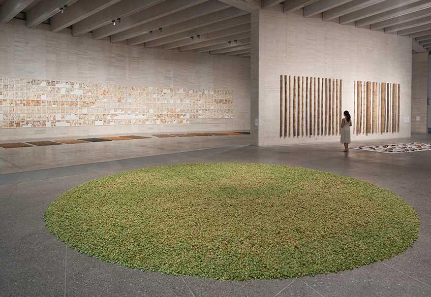 herman de vries, chance & change. Vista de la exposición en MUSAC, Museo de Arte Contemporáneo de Castilla y León. Hasta el 4 de febrero de 2018
