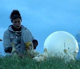 Moon Goose Analogue: Lunar Migration Bird Facility, de Agnes Meyer-Brandis