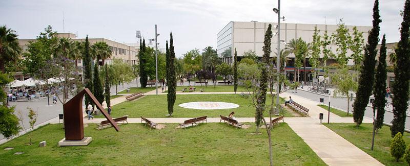 Cuatro Auxiliares de Archivos, Bibliotecas y Museos en la Universidad Politécnica de Valencia