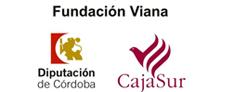 Becas Fundación Viana para la realización de proyectos artísticos