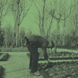 Caillebotte. Pintor y jardinero