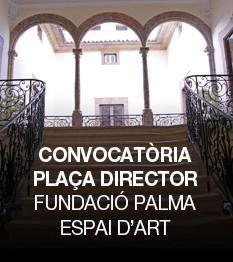 Director gerente en la Fundació Palma Espai d´ Art