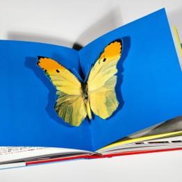Libros Ivorypress
