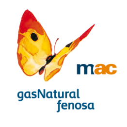 Programa de residencias artísticas internacionales y locales. Convocadas por el MAC. Gas Natural Fenosa