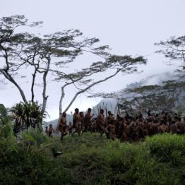 Planeta Cine. Películas en defensa del ecosistema