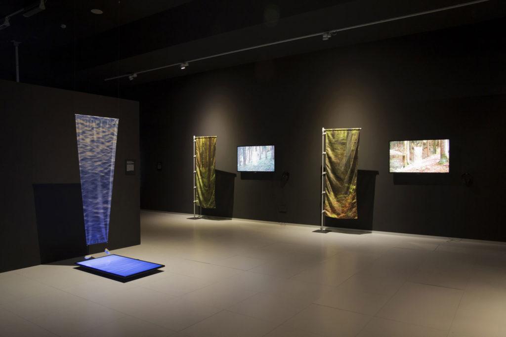 """David Cantarero Tomás. Vista de la exposición """"Tensiones escópicas"""" en ETOPIA, 2020"""