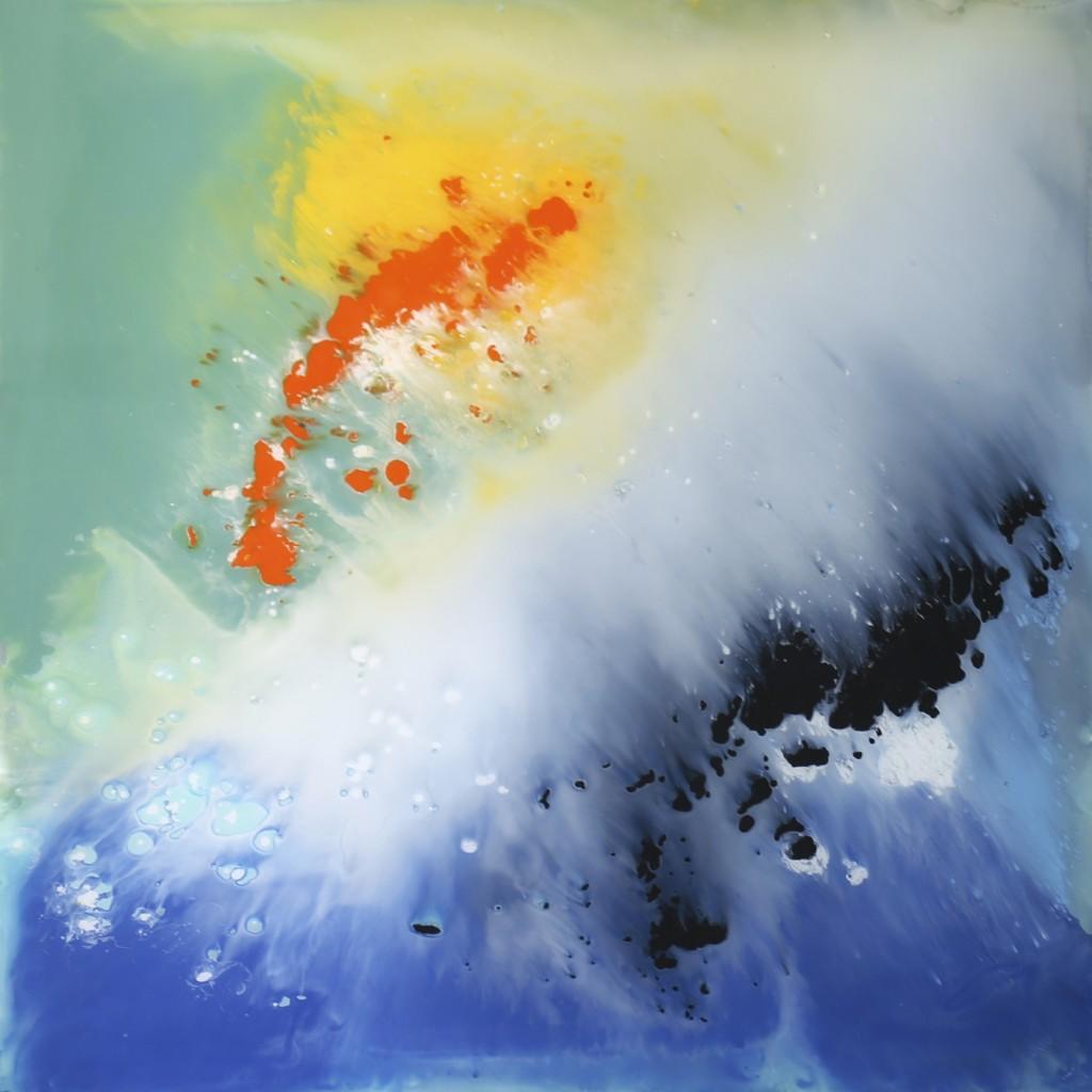 Cristina Gamón. Wild iceberg, 2018
