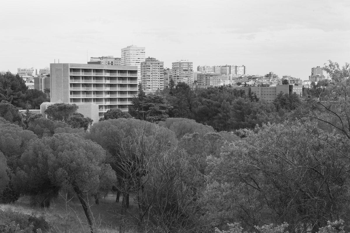 Florencia Rojas. Vista de Dehesa de la Villa, proyecto Un incendio en el subsuelo