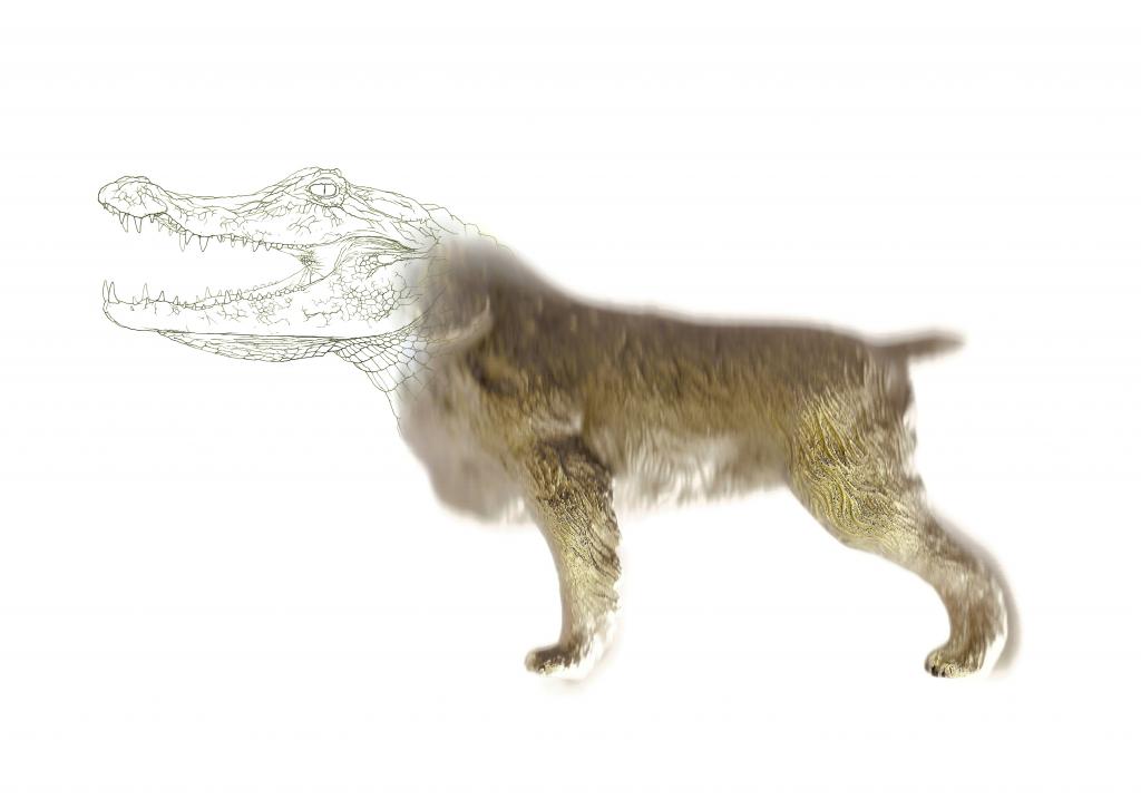 """Gene targeting. """"dog"""", 2013"""