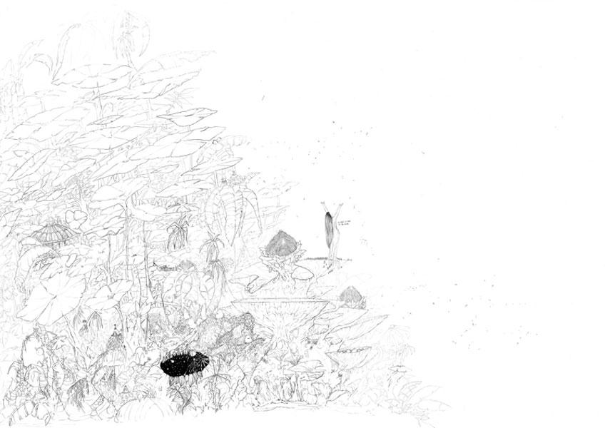 María Chaves. Hacia la tierra prometida, 2018. Serie La selva