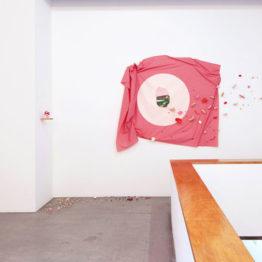Marta Bran. Picnic, 2014. Galería Trinta, Santiago de Compostela. Vista de la exposición.