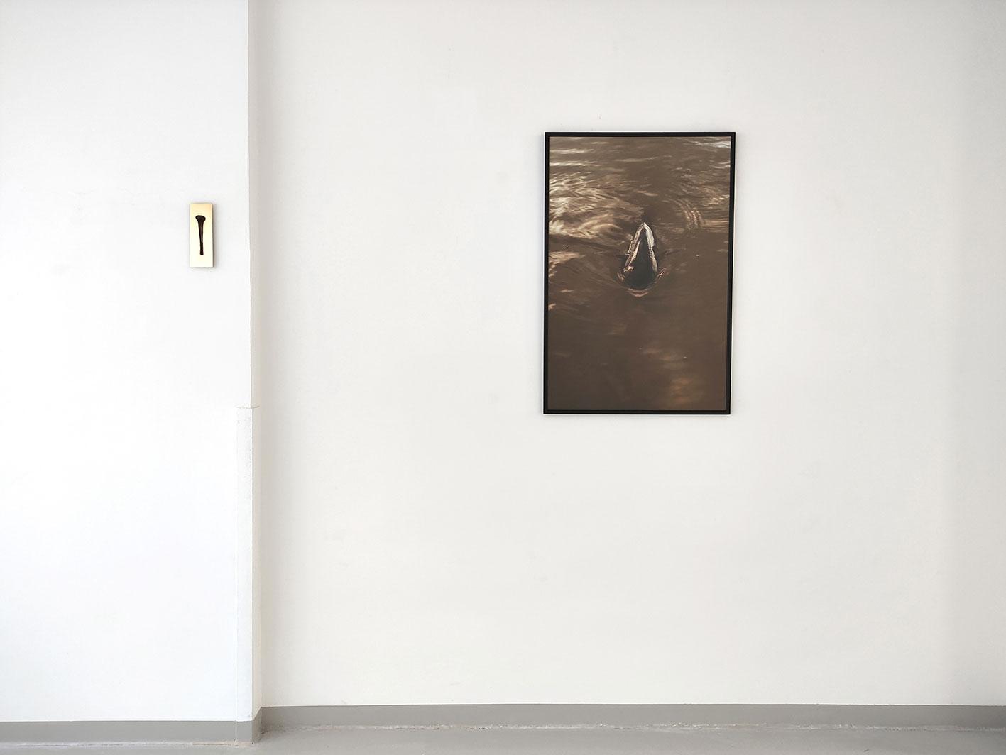Moreno & Grau. La Isla (Arcilla. Amoníaco. Mosquito), 2020. Vista de exposición. La Gran