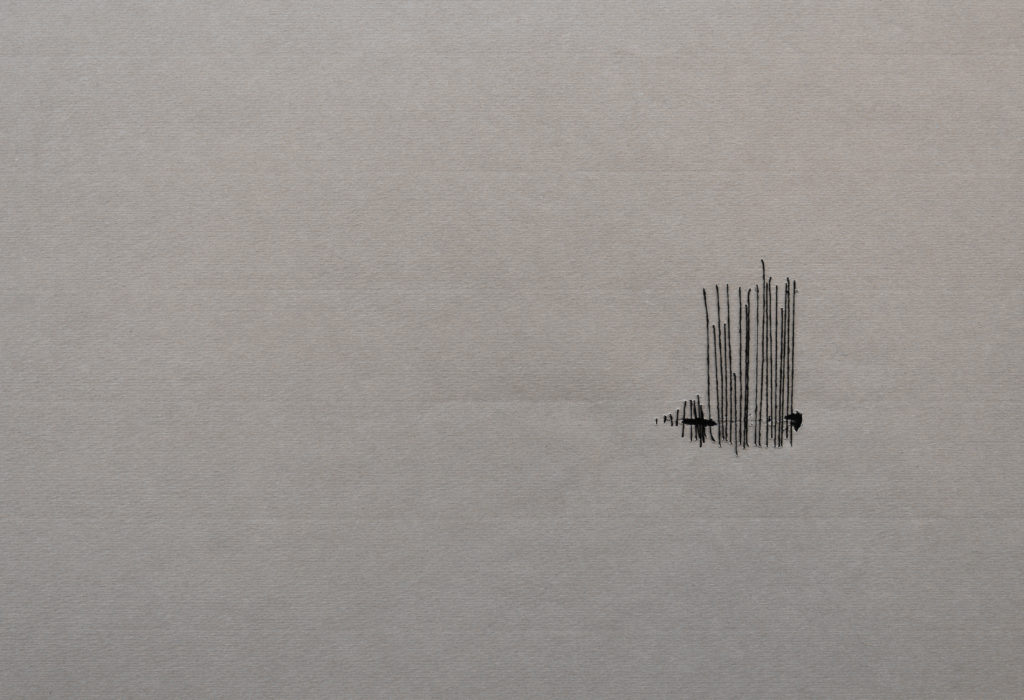 Shirin Salehi. Serie Todo permaneció en silencio, 2010