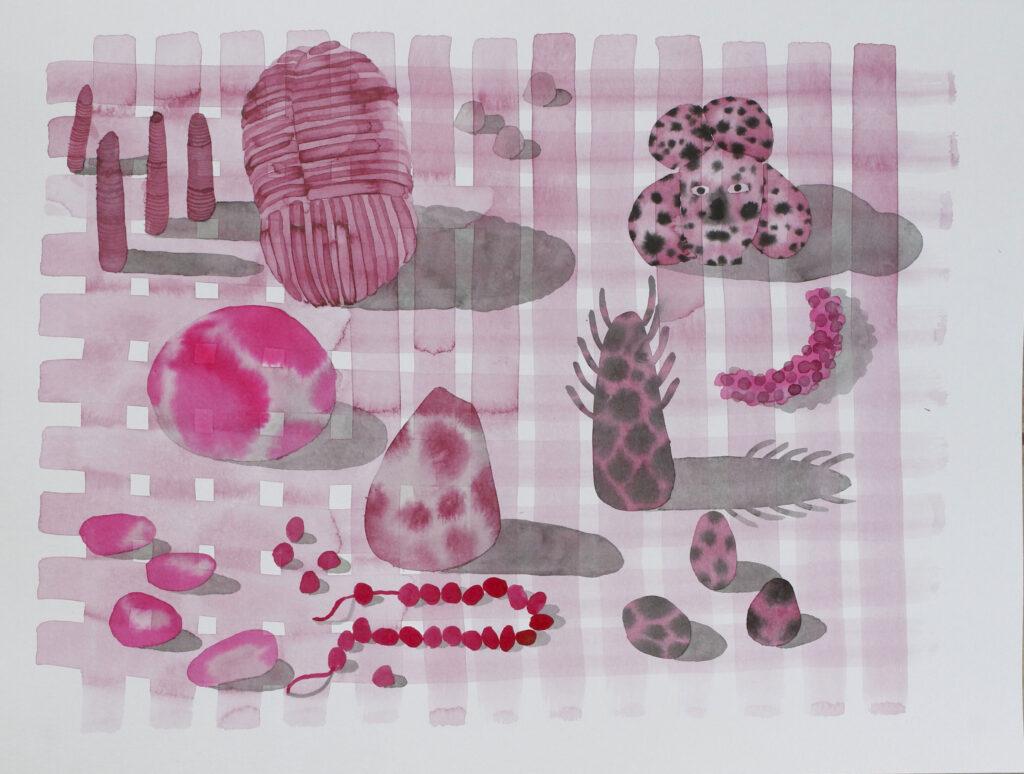 Vanessa Donoso López. Found objects on pink blanket. 2020