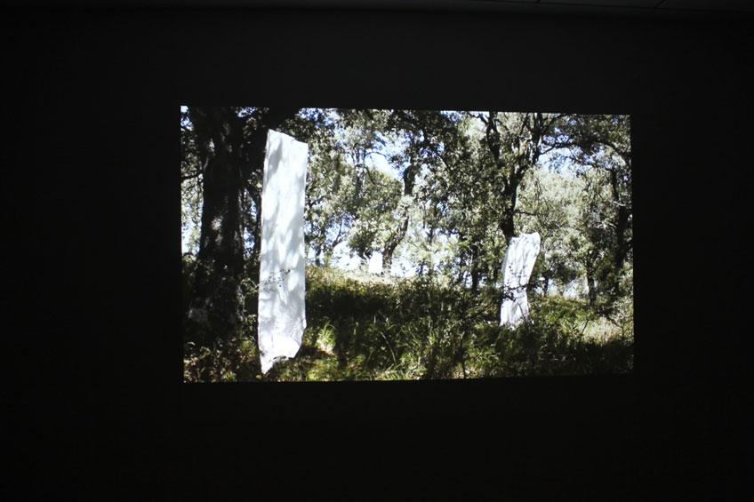 Veva Linaza. Proyección del vídeo M140913 de la serie Gerizpean. 2013
