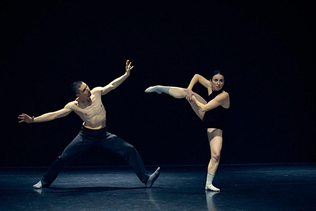 METAMORPHOSIS DANCE. ReAcción