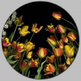 Carmen Van den Eynde. Galería Espiral