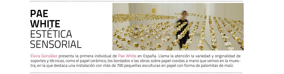Exposición de Pae White en la galería  Elvira González