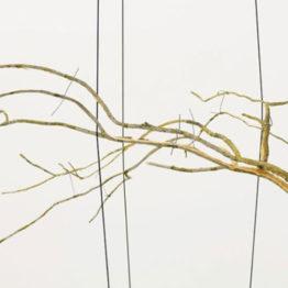 Daniel Steegmann Mangrané, V Premio de Arte Catalina d'Anglade ARCOmadrid