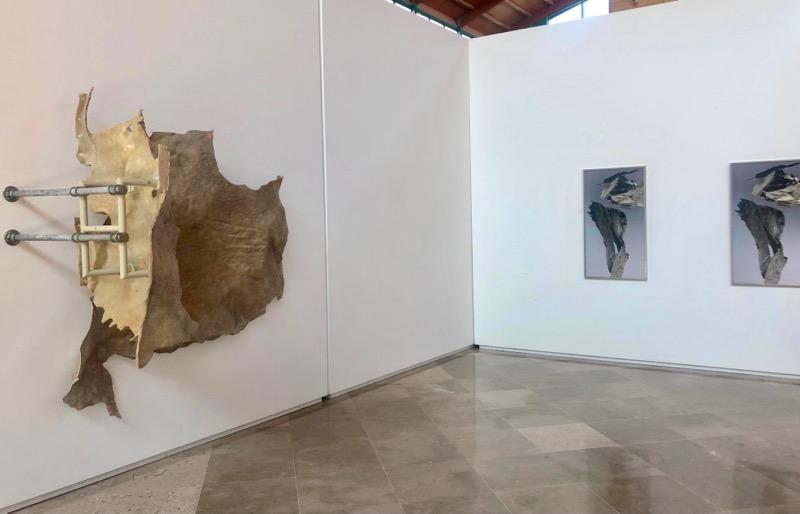 """""""And the wall became allergic to humans. Réplica alérgica"""". Biblioteca Central de Cantabria"""