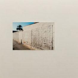 La Galería silvestre obtiene el Premio OFF de PHotoESPAÑA por su actual muestra de Catarina Botelho
