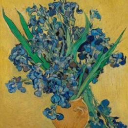 Houston busca la vida de Van Gogh en su arte