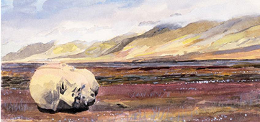 Xesús Vázquez. Tierra, pan, paz, 2020