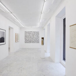 WE COLLECT inaugura espacio en Madrid