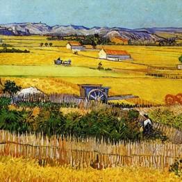 Van Gogh. La Plaine de la Crau avec des pêchers en fleurs — Arles, 1889
